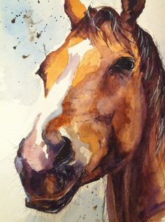 Horse watercolour by sarahstokes on DeviantArt