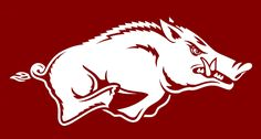 Arkansas Razorbacks.  Woo Pig!