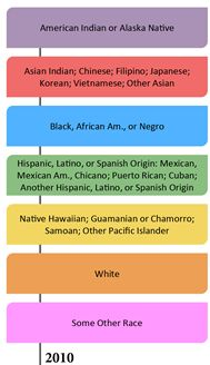Race and Ethnicity Across the Decades- This is a great representation of change overtime. Puerto Ricans, Data Visualization, Chicano, American Indians, Ethnic, Racing, Change, Native American Indians, Lace