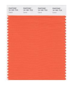 Pantone Smart Swatch 16-1361 Carrot Spring Color Palette, Spring Colors, Warm Spring, Warm Autumn, Fashion Merchandising, Warm Undertone, Work Wardrobe, Pantone Color, Brown And Grey