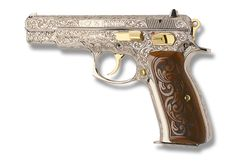 PI-25 | Pistols Exclusive - My dream gun!