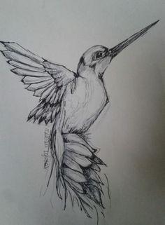 17 Trendy Bird Sketch Tattoo Hummingbirds Informations About 17 Trendy Bird Sketch Tat Bird Drawings, Pencil Art Drawings, Cool Art Drawings, Art Drawings Sketches, Tattoo Sketches, Animal Drawings, Sketches Of Birds, Flying Bird Drawing, Hummingbird Drawing