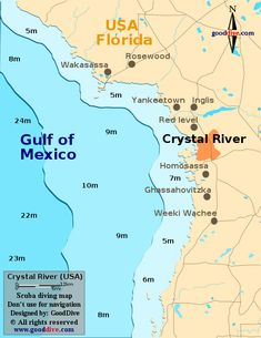 32 Best Crystal River FL images