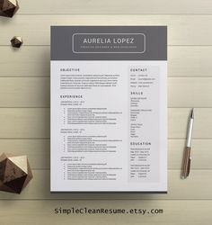 Curriculum Vitae Template Professional Resume by SimpleCleanResume