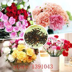 200pcs Mixed Carnation seeds, bonsai Carnation flower seeds,Mom gifts, florists Flower Perfumed Garden,plant for home & garden