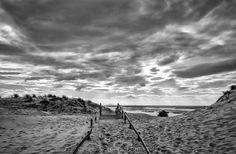 Stéphan Amelinck - Photographe Landes et Pays Basque - Mon Portfolio 4
