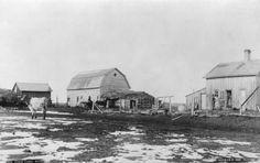 Farm yard : Digital Resources on Manitoba History
