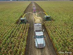 #farmlife #agriculture #field