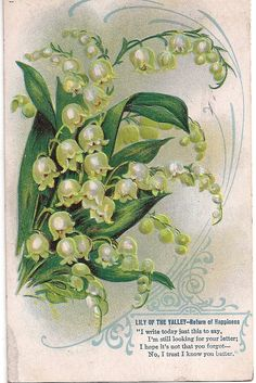Beautiful old antique postcard, Lily of the Valley - Return of Happiness. Wonderful sentiments in this little poem.