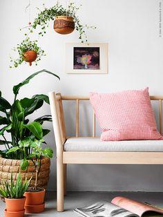Det frodas bokstavligen från golv till tak i vårens inredning! BJÖRKSNÄS soffa i björk med dyna INGEFÄRA terrakottakruka med fat och GULLKLOCKA kuddfodral.