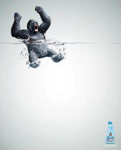 Lenor fabric softener advert - Gorilla