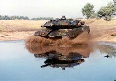 Leopard in water