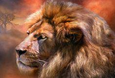 Spirit Of The Lion Print by Carol Cavalaris