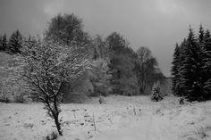 Panoramio - Photos by ériimi > Tél - Winter