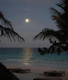 Sit on the Beach at night an a comfy blankee with a full moon..
