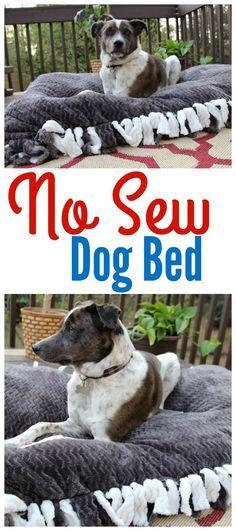 Diy dog stuff - No Sew Dog Bed ad FeedDogsPurina Diy Dog Bed, Homemade Dog Bed, Diy Vanity, Training Your Dog, Leash Training, Potty Training, Training Tips, Dog Behavior, Dog Accessories