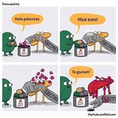 Una forma dinámica y divertida de explicar la fisiopatología de la pancreatitis #pancreas #vesicula #veterinarian #vet #catsofinstagram #dogsofinstagram #vzla #venezuela #consulta #clinica contactos: Dr. Emdy Díaz 0424/6501126-0416/6621750
