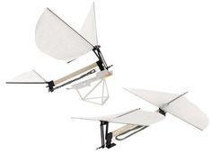 Gakken Ornithopter Entomopter Flying Bird Plane Model