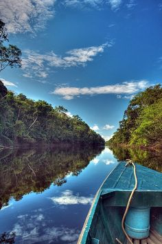 The Amazon River in South America is the second longest river in the world and by far the largest by waterflow with an average discharge greater than the next seven largest rivers combined (not including Madeira and Rio Negro, which are tributaries of the Amazon). The Amazon, which has the largest drainage basin in the world, about 7,050,000 square kilometres (2,720,000 sq mi), accounts for approximately one-fifth of the world's total river flow.