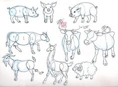 Draw Pig Cow Goat and Sheep by Diana-Huang.deviantart.com on @deviantART