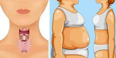 L'alimento che attiva la tiroide e fa perdere 5 chili a settimana