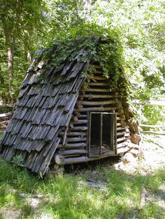Rustic chicken coop