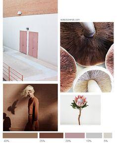 Color inspiration: terracotta+blush