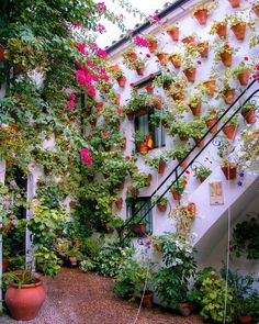 New post on quiet-nymph Feng Shui, Best Restaurants London, Cordoba Spain, Spanish Towns, Miguel Angel, Best Places To Eat, Nymph, Outdoor Walls, Elle Decor