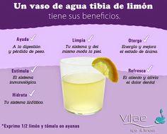 Beneficios de un vaso de agua con limón