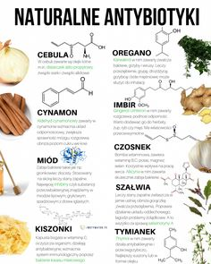 They have potent anti-inflammatory, anti-cancer as well as antioxidant benefits, as well as it includes nutrition that offer detox-support along with lots of different essential nutrients which promote excellent health. Matcha Benefits, Lemon Benefits, Coconut Health Benefits, Tomato Nutrition, Gewichtsverlust Motivation, Natural Antibiotics, Healthy Oils, Matcha Green Tea, Stop Eating