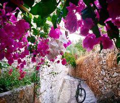 Old Datca streets . Datca, Mugla, Turkey / by Aygün BAĞ Kalkan Turkey, Marmaris, Turkey Travel, Travel Inspiration, Spring Summer, Street, Instagram, Photos, Pictures