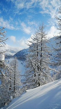 Winter Wonderland - Wintertime in Serre Chevalier, France. - photographer Andrew Arseev