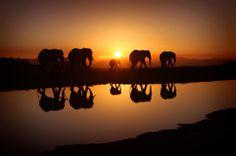 Tramonti mozzafiato in Namibia