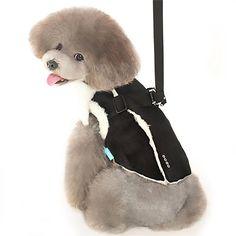 e509e0b69f1 Furry Winter Dog Harness Coat by Dogo - Black. BaxterBoo.com