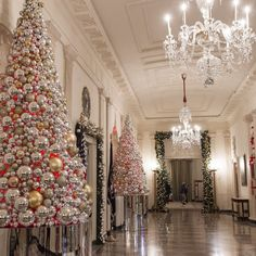 """THE WHITE HOUSE, Pennsylvania Ave., Washington DC, """"Michelle Obama's final White House holiday decorations"""", pinned by Ton van der Veer. Christmas Hallway, White House Christmas Tree, Christmas Decorations For The Home, Noel Christmas, All Things Christmas, House Decorations, Christmas Dance, Christmas Blessings, Silver Christmas"""