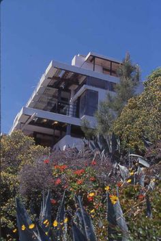 wolfe house schindler - Google Search
