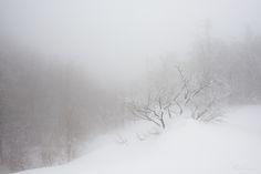 il morbido suono della neve - salendo sul Cusna durante una improbabile giornata