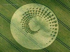 Crop circle en spirale, parfait!