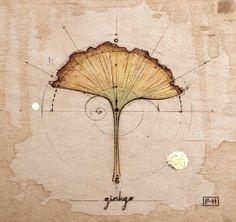 ginko leaf- Fay Helfer