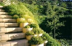 CMA Awards 2002 for Excellence - every two years the Concrete Manufacturers Association celebrates this event in recognition of high standards in quality. Retaining Blocks, Cma Awards, Stairways, 4x4, Design, Stairs, Staircases, Ladders
