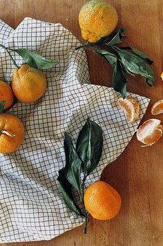 Citrus food styling.