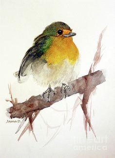 Beautiful, simple bird watercolor!