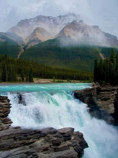 Athabasca Falls | Jasper National Park, Canada     http://www.janetcampbell.ca/