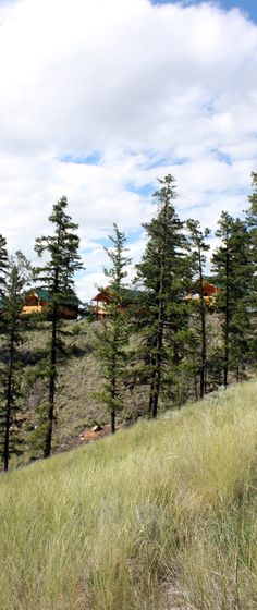 Whether you are looking to celebrate a special occasion, host an executive retreat, or plan for family fun time, the Wilderness Way Resort's authentic log cabins provide deluxe amenities in a rugged yet elegant oasis.