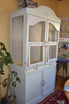Converted armoire into an aviary for parakeets and finches.