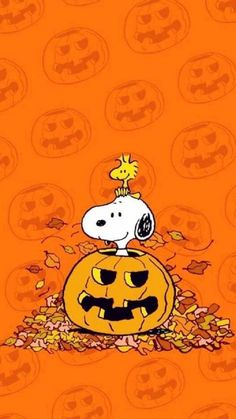 Snoopy Halloween Wallpaper by - - Free on ZEDGE™ now. Browse millions of popular halloween Wallpapers and Ringtones on Zedge and personalize your phone to suit you. Browse our content now and free your phone halloween wallpaper Snoopy Halloween, Charlie Brown Halloween, Charlie Brown And Snoopy, Halloween Art, Iphone Wallpaper Herbst, Fall Wallpaper, Wallpaper Iphone Disney, October Wallpaper, Iphone Backgrounds