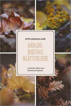 Blätterliebe - analog - digital - pentax - Details - Herbst - Kommunikation - wertvoll