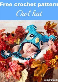 free crochet pattern owl hat by jennyandteddy