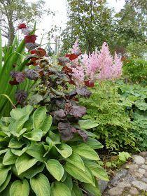 Løvli, livet på landet.: Høst i hagen Astilbe, Garden Accessories, Planters, Flowers, Pictures, Tropical Gardens, Gardening, Burgundy, Outdoors
