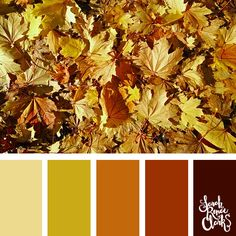 25 Color Palettes Inspired by Pantone Spring/Summer 2019 Color Trends Fall Color Schemes, Fall Color Palette, Colour Pallette, Color Combos, Color Of The Year, Pantone Color, Color Trends, Color Inspiration, Spring Summer